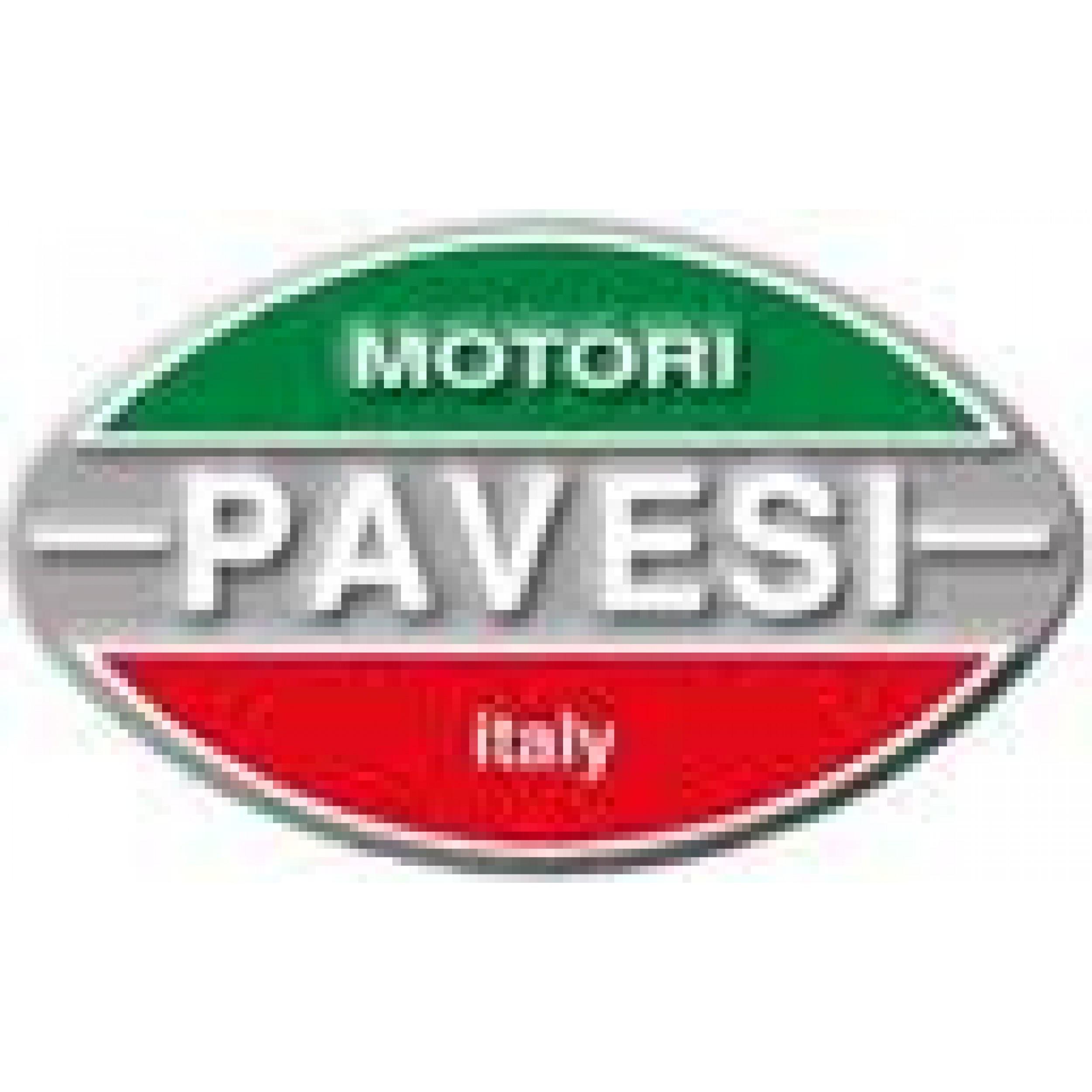 PARTS PAVESI ENGINE